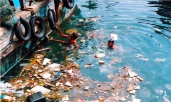 Nedir? | kirli-deniz-dissallik